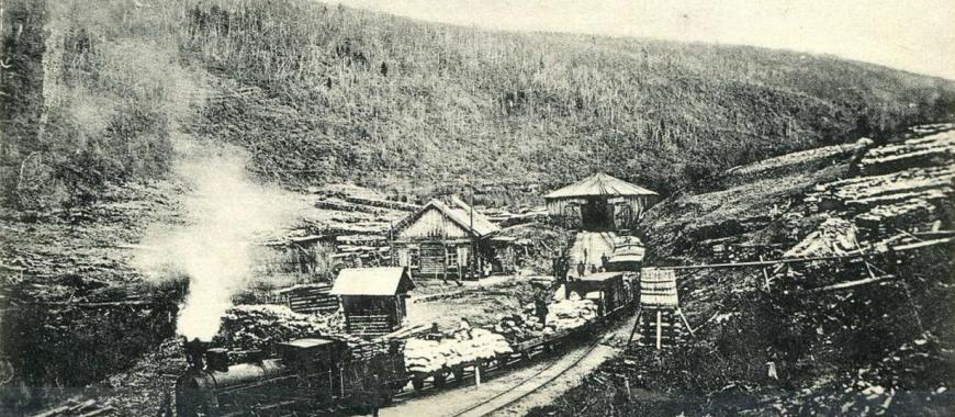 Михайло-Архангельская стрелка Бодайбинской железной дороги. 1908