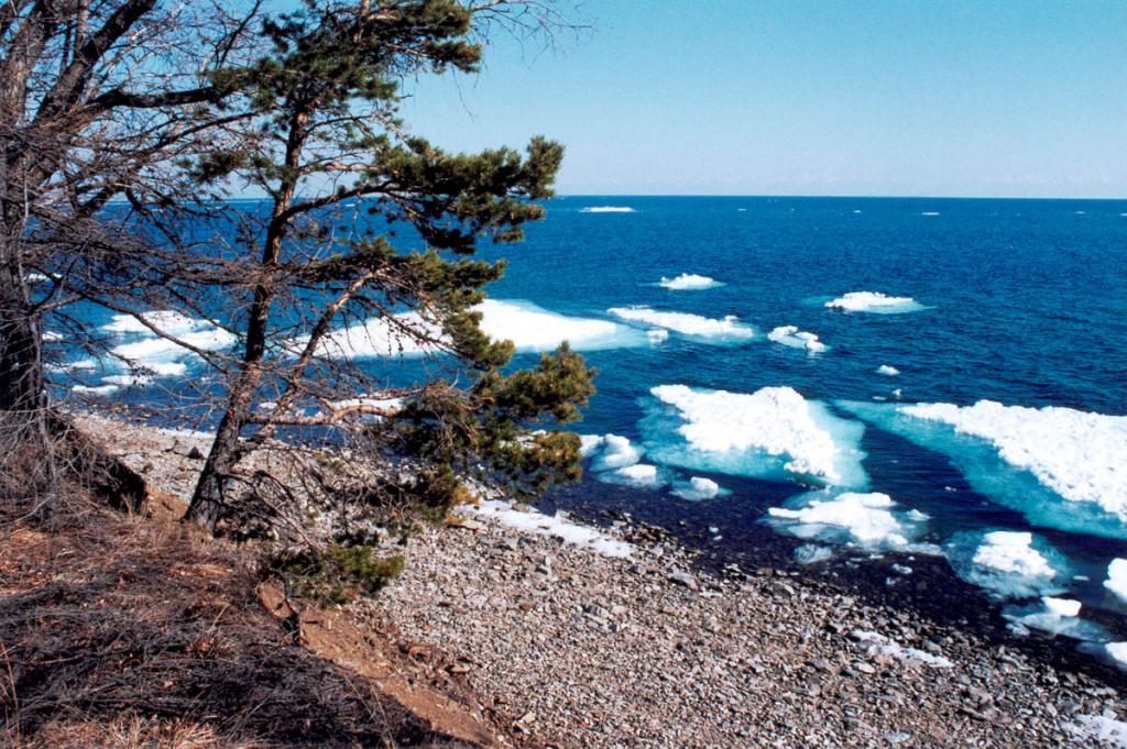 На юге Байкала лед начинает таять в середине апреля и окончательно исчезает к концу мая.