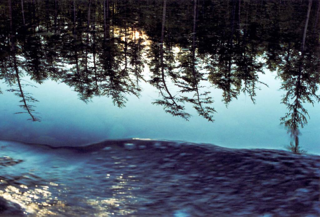 Закат солнца в отражении. Снимок сделан с медленно двигающейся вдоль берега моторной лодки.
