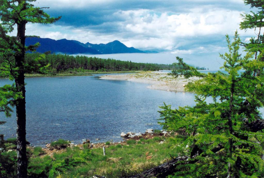 Лагунное озеро на мысе Покойники отделено от Байкала 30-метровым галечниковым валом. Байкало-Ленский заповедник.
