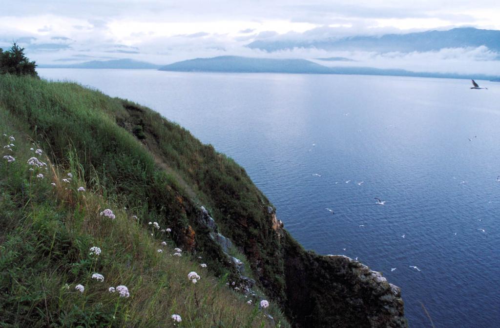 Июль приносит в Чивыркуйский залив низкую облачность и частые туманы. Снимок сделан с вершины северо-западного склона острова Голый Колтыгей.