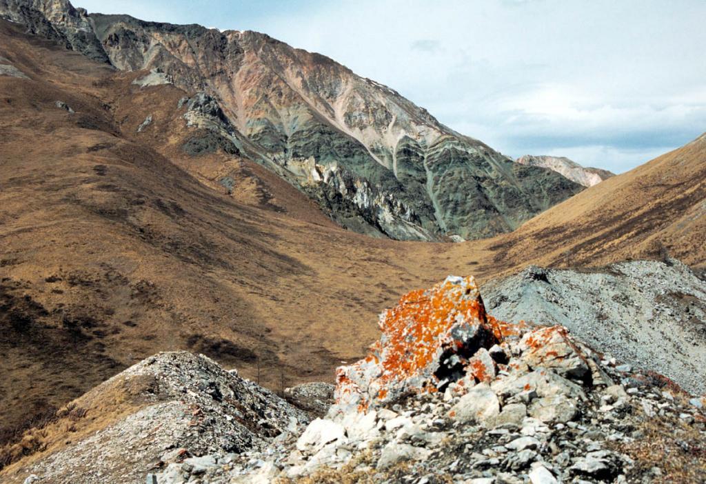 На высоте более 1700 м. над ур. м. в горном узле Мунку-Сардык рапространены кустарничково-мохово-лишайниковые и злаково-лишайниковые сообщества тундры.