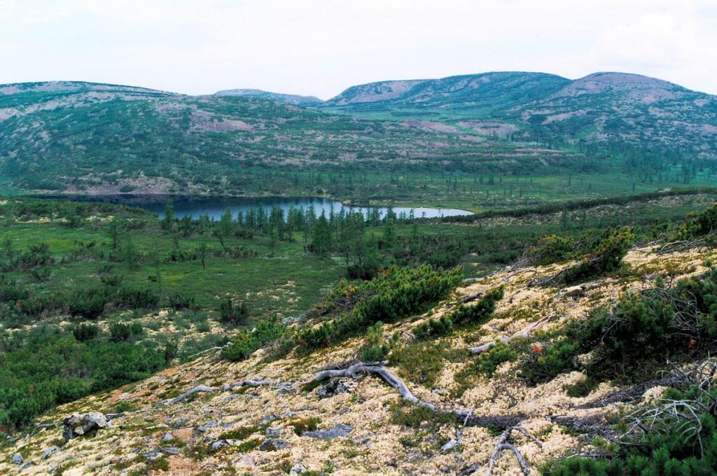 Из озера, расположенного на небольшом межгорном понижении в южной части Байкальского хребта, берет свое начало великая река Северной Азии Лена.