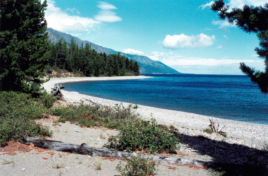 У разных местностей свои характерные запахи. Для северных берегов Байкала совершенно явно в смеси слагающих их ароматов выделяется главный, приносимый ветром, - запах кедровой хвои. На снимке: побережье у мыса Северного Кедрового.