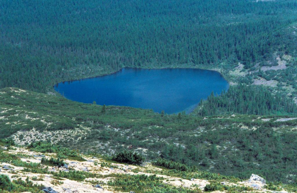 Озеро Хайрюзовое дает начало одноименному правому притоку р. Большой Анай (Байкальский хребет). Озеро находится на границе гольцового и подгольцового поясов вблизи истока реки Лена.