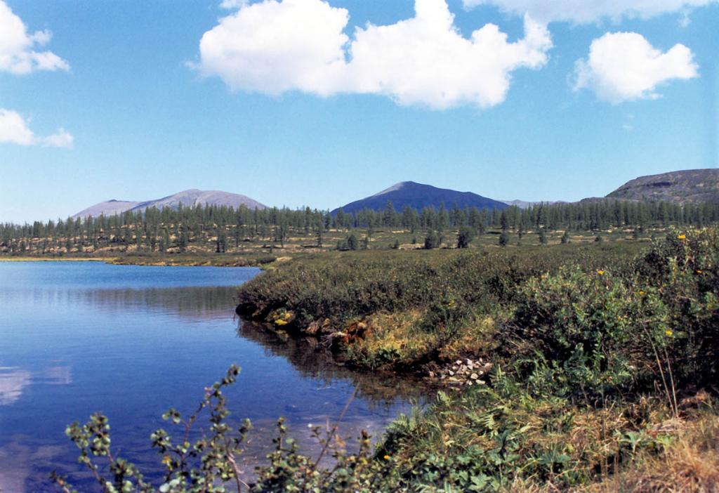 Озеро Проходное лежит в зоне горной лесотундры Байкальского хребта (долина р. Лена, 13 километров от истока). На берегу - заросли карликовой березки, лиственничные редколесья и участки лишайниковой тундры.