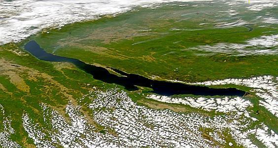 По северо-западному побережью Байкала проходит географически и климатически обусловленный флористический рубеж, делящий единую Евроазиатскую область на 2 подобласти: Евро-Сибирскую темнохвойно-лесную и восточносибирскую светлохвойно-лесную. В пределах Евро-Сибирской подобласти широко распространены леса, сложенные несколькими древесными породами: елью обыкновенной, пихтой сибирской, кедром сибирским, сосной обыкновенной и лиственницей сибирской. Восточносибирская подобласть характеризуется повсеместным рас