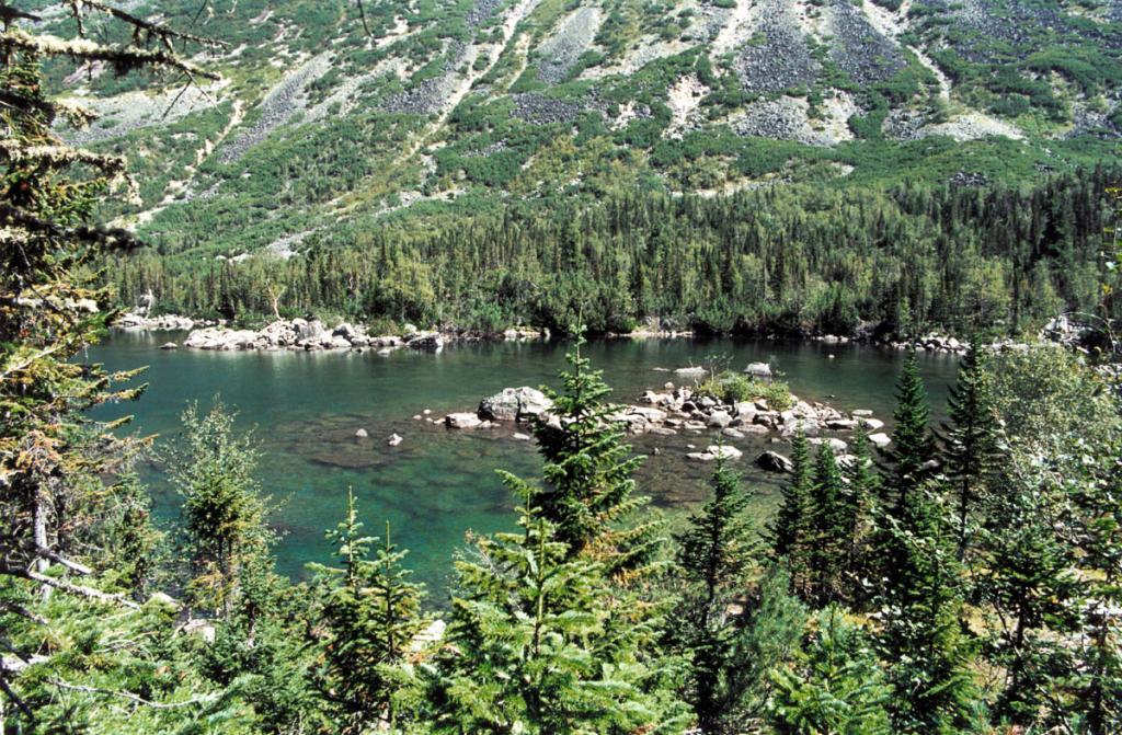 """Живописное озеро """"Нижнее"""" на речке Шумилиха (Баргузинский хребет) окружено парковым ельником и зарослями субальпийских кустарников."""