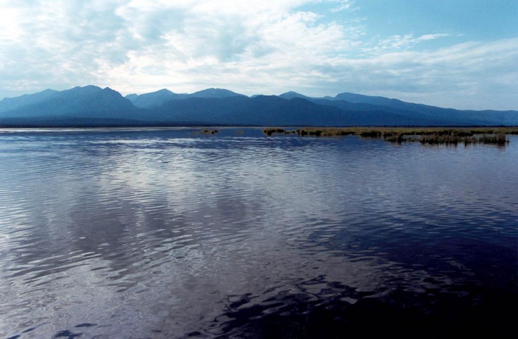 Ширина Ангаро-Кичерской дельты достигает 27 километров. Во второй половине лета из-за более высокого уровня воды дельта становится похожей на сплошное, заросшее травой, мелководное озеро.