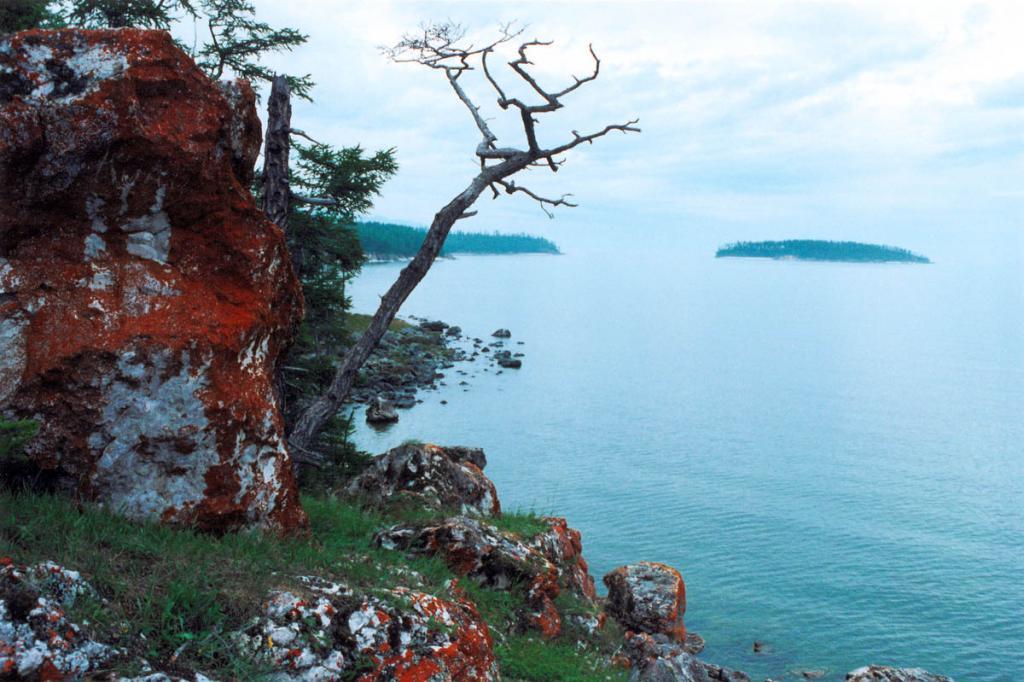 Уникальная растительность, лежбища байкальской нерпы, редкие в мире разновидности мраморов, остатки древних вулканов, удивительные пейзажи, чистый воздух - всем этим богата природа Ушканьих островов.