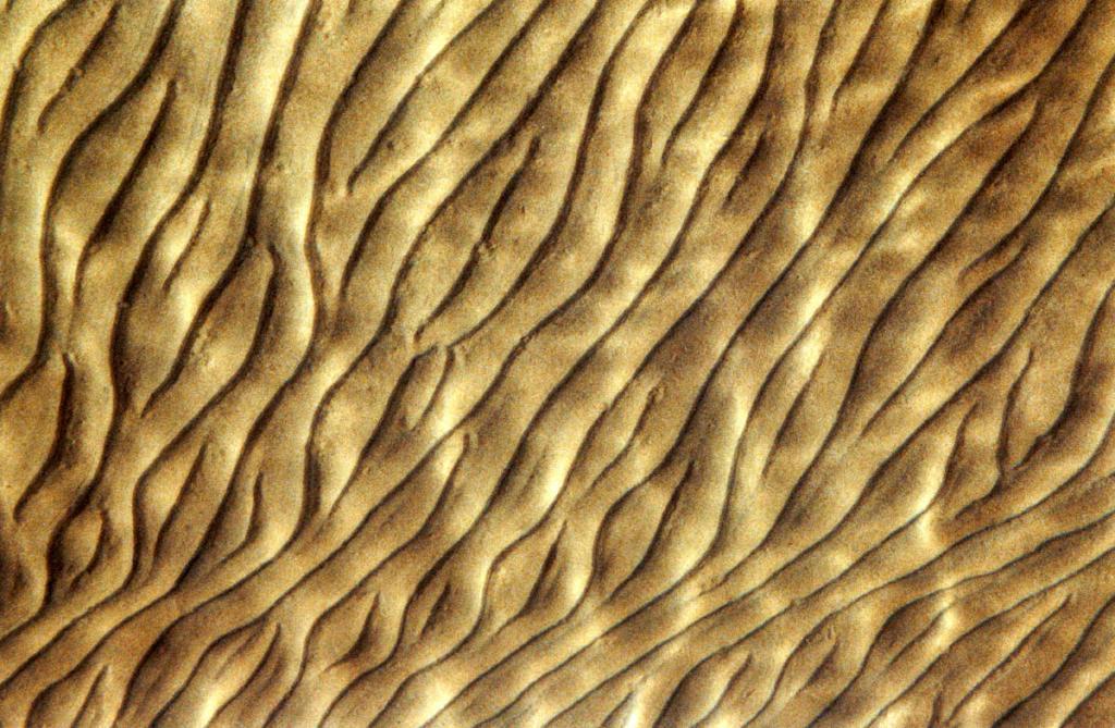 Узор на песчаном байкальском дне меняется в зависимости от силы и высоты волн.