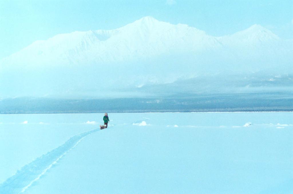 Сезонное преображение Байкала удивительно - от безмятежного летнего простора до белой пустыни зимой.