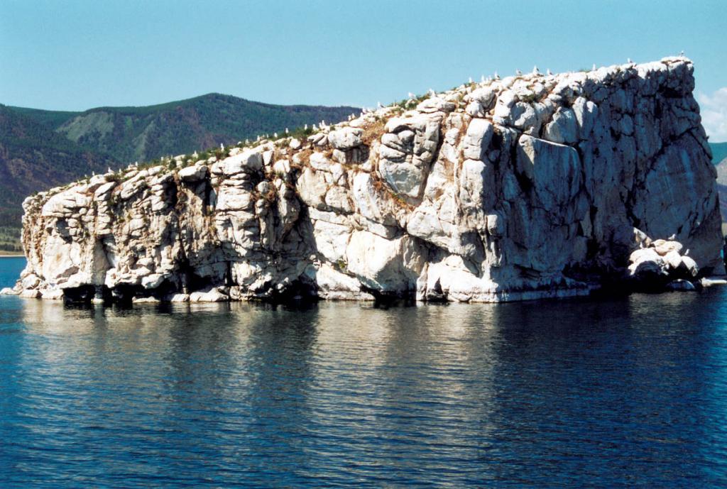 Остров Ольтрек (Барокчин). На острове находится чаячий базар.