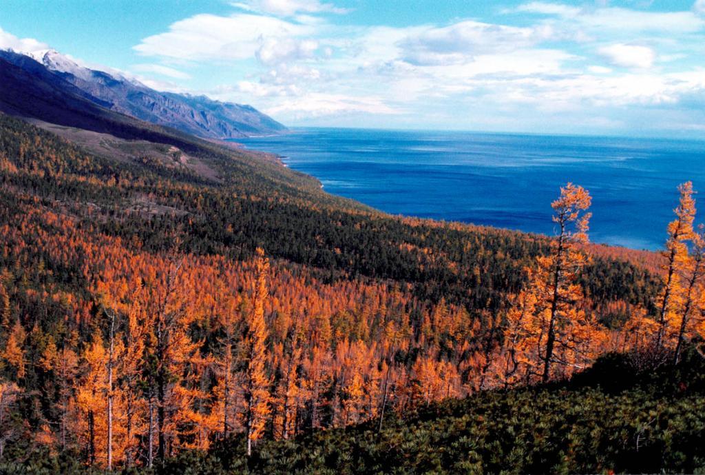 Первое дыхание байкальской осени. На снимке: заповедное побережье у Кедровых мысов в середине сентября (берег просматривается до мыса Елохин).