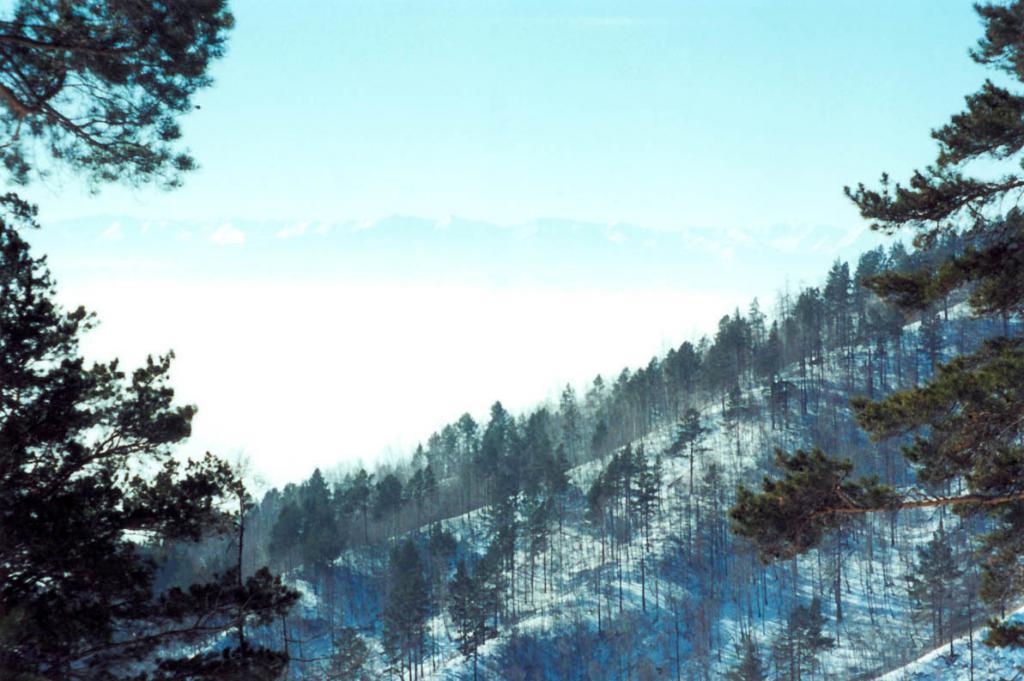 Морозная дымка над южным Байкалом. Снимок сделан с вершины Киркирейской Гривы.