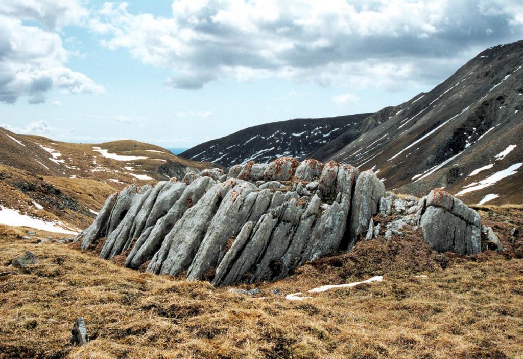 Древние камни байкальских гор - бездонная информационная кладовая по геологический истории Сибирской платформы.