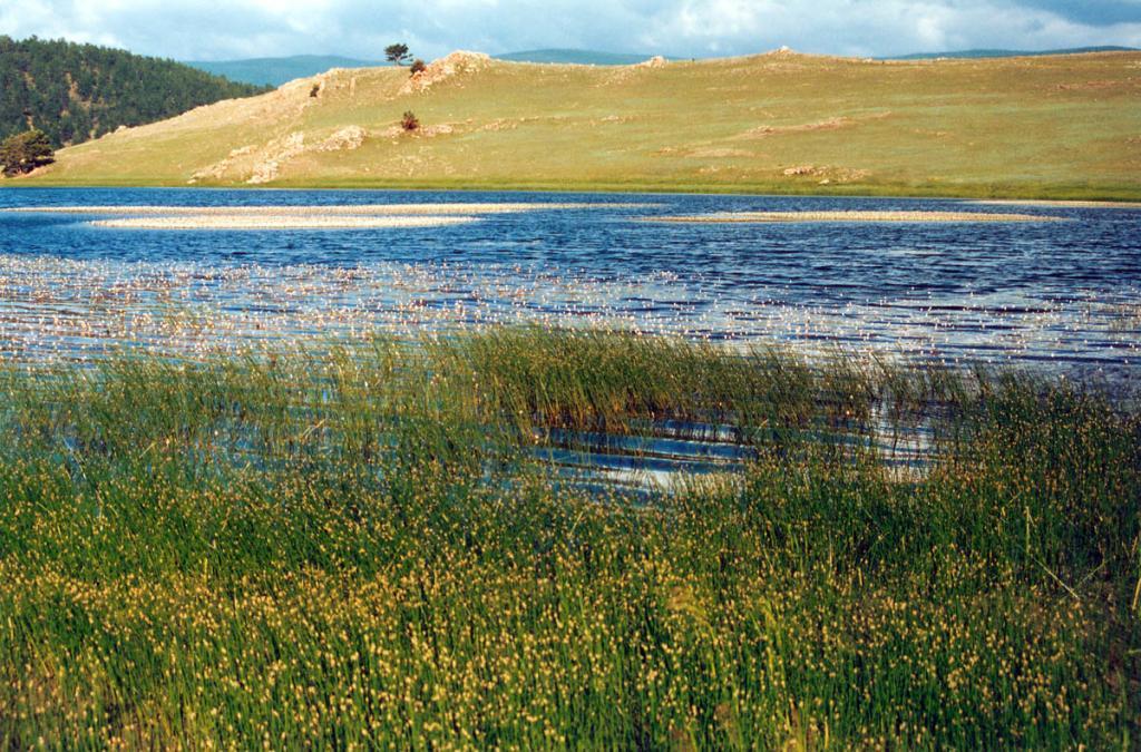 Мелководный северный угол залива на мысе Арул во многом напоминает типичное лагунное озеро.
