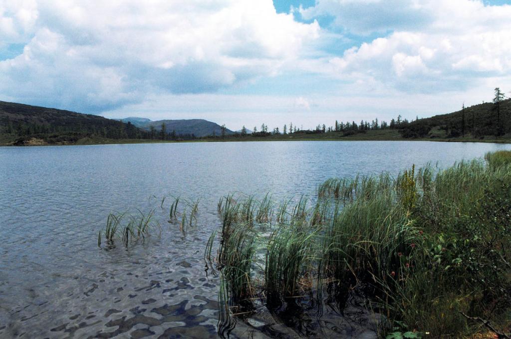 Из этого горного озера (Байкальский хребет, 1466 м. над ур.м., 20 км. от берега Байкала, 2 км. от истока правого притока р. Анай речки Хайрюзовка) берет начало левый (главный) приток великой Азиатской реки Лены. Одно из самых изученных высокогорных озер Байкальского хребта.