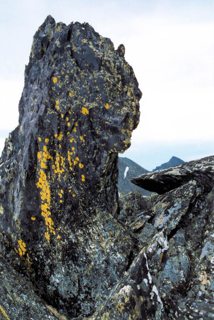Коллизия Сибирской платформы с Баргузинским микроконтинентом сопровождалась не только образованием коллизионных гранитоидов Ангаро-Витимского батолита, но и складчатостью, покровообразованием и метаморфизмом палеозойских толщ. На снимке: свидетель этих геологических процессов, происходивших в ордовикско-силурийское время, венчает одну из вершин Байкальского хребта (гребень южнее перевала р. Южно-Кедровский - р. Правая Тонгода).