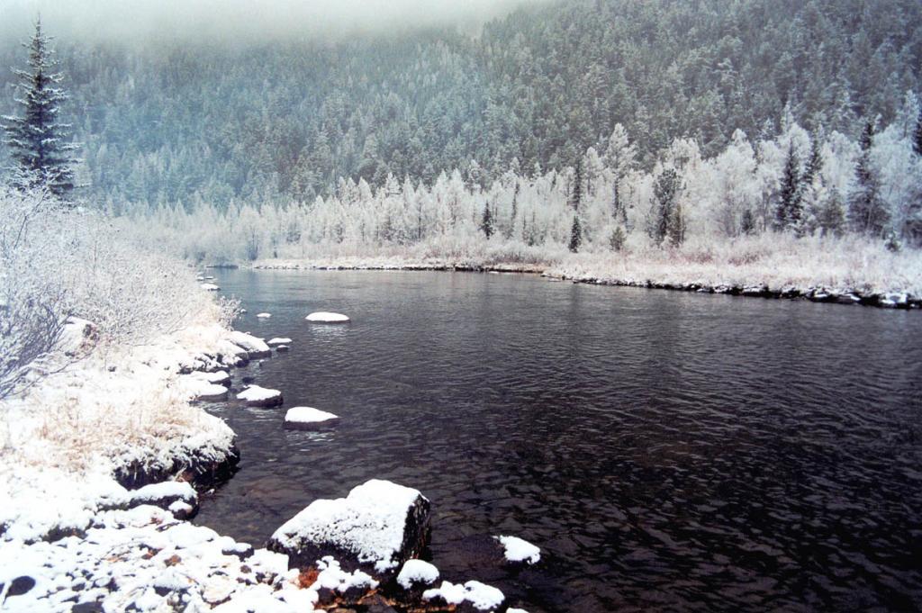 Мокрый осенний снег преображает берега байкальских рек. На снимке: правый приток реки Ина Сувотикан.