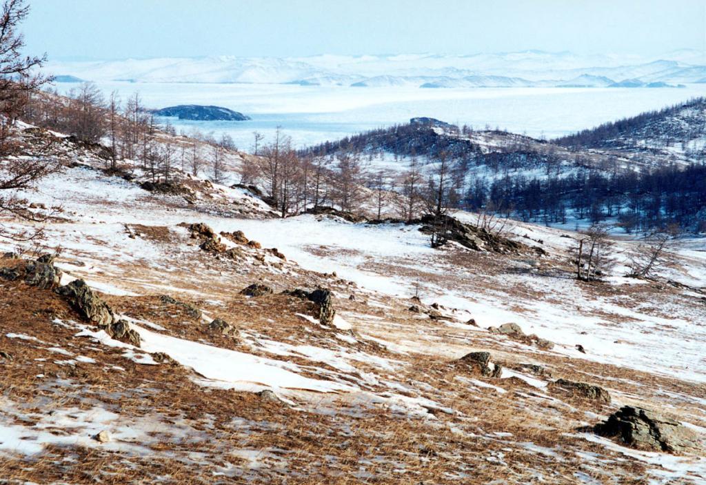 Каменистые склоны Приморского хребта у залива Мухор (юго-западная оконечность Малого моря) частично покрыты низкорослыми редкостойными лиственничными лесами. Здесь заканчивается Тажеранская степь. Малое количество осадков и сильные ветра являются основными причинами невысокого снежного покрова. На снимке: побережье залива Мухор севернее Шара-Тогот. Снимок сделан в начале марта.