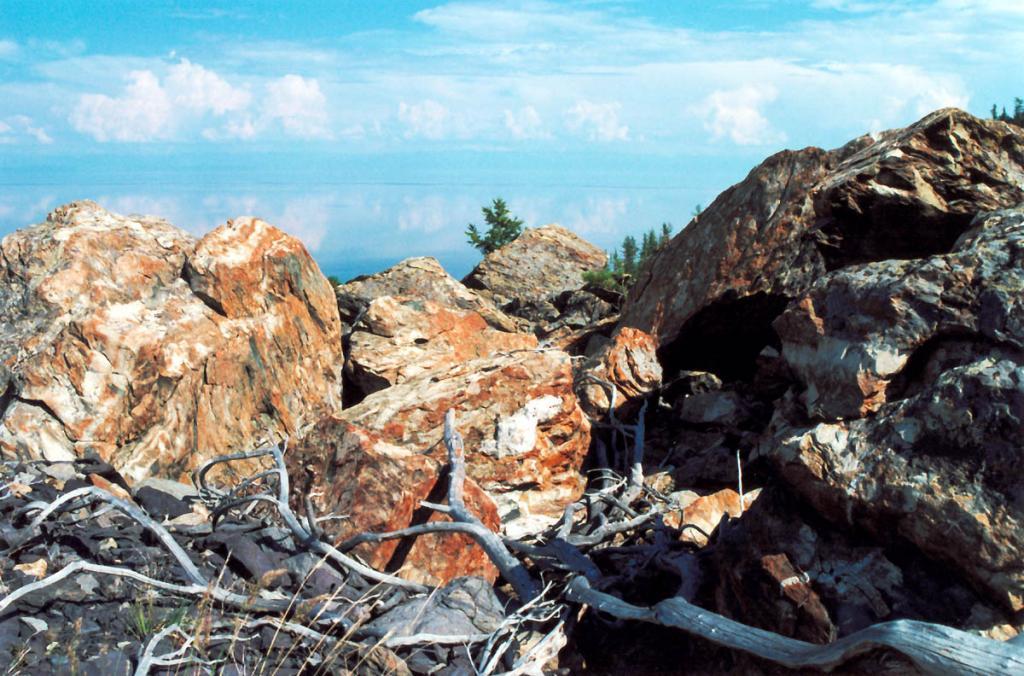 Камни, покрытые накипными лишайниками, на окраине Южно-Кедровской ледниковой морены (правая морена).