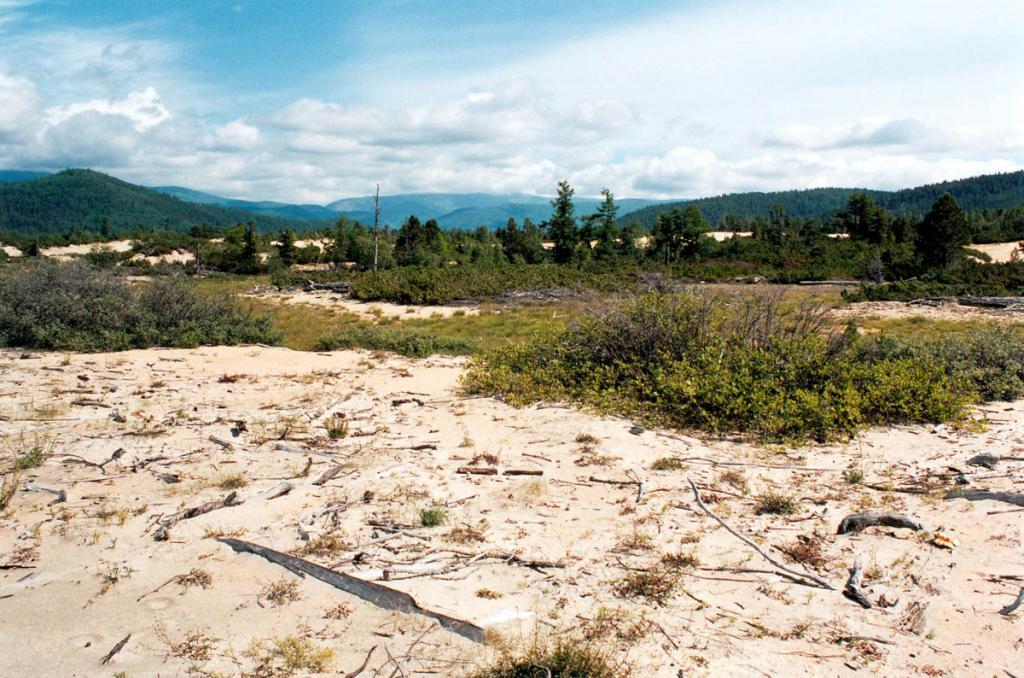 Севернее устья речки Большой Чивыркуй находится крупный эоловый участок, вдающийся в материк на 850 метров. Уникальный животный и растительный мир песков - редкая жемчужина на байкальских побережьях.
