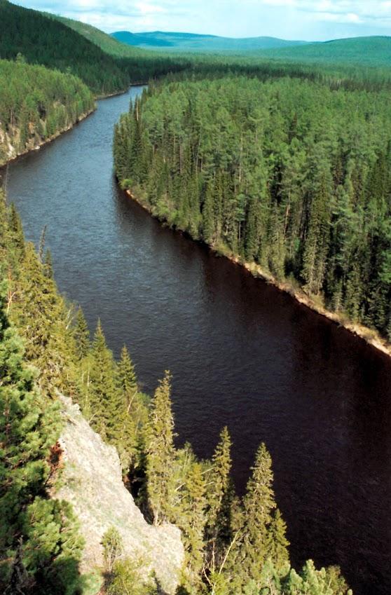 Великая река Северной Азии Лена в пределах юго-западной части Байкало-Ленского заповедника (200 километров от истока).