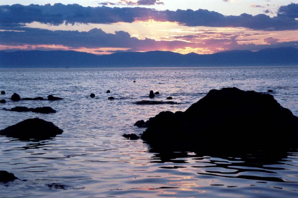 Даже поздним вечером с лежбища на острове Долгий доносятся хлюпанья и фырканья ныряющих на закате сотен нерп.