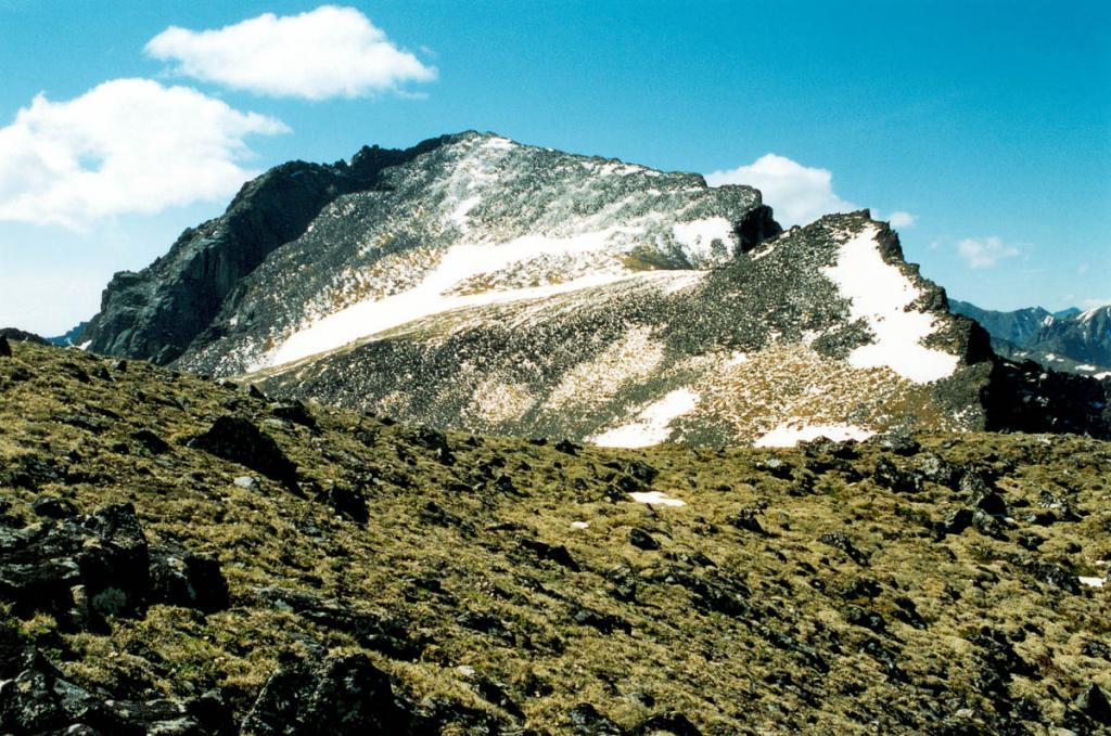 Краски каменистой высокогорной тундры на прибайкальских хребтах зависят прежде всего от видов лишайников, образующих напочвенные сообщества. На этом снимке один из перевалов на Баргузинском хребте покрыт ковром, образованным зеленовато-желтой кустистой алекторией.