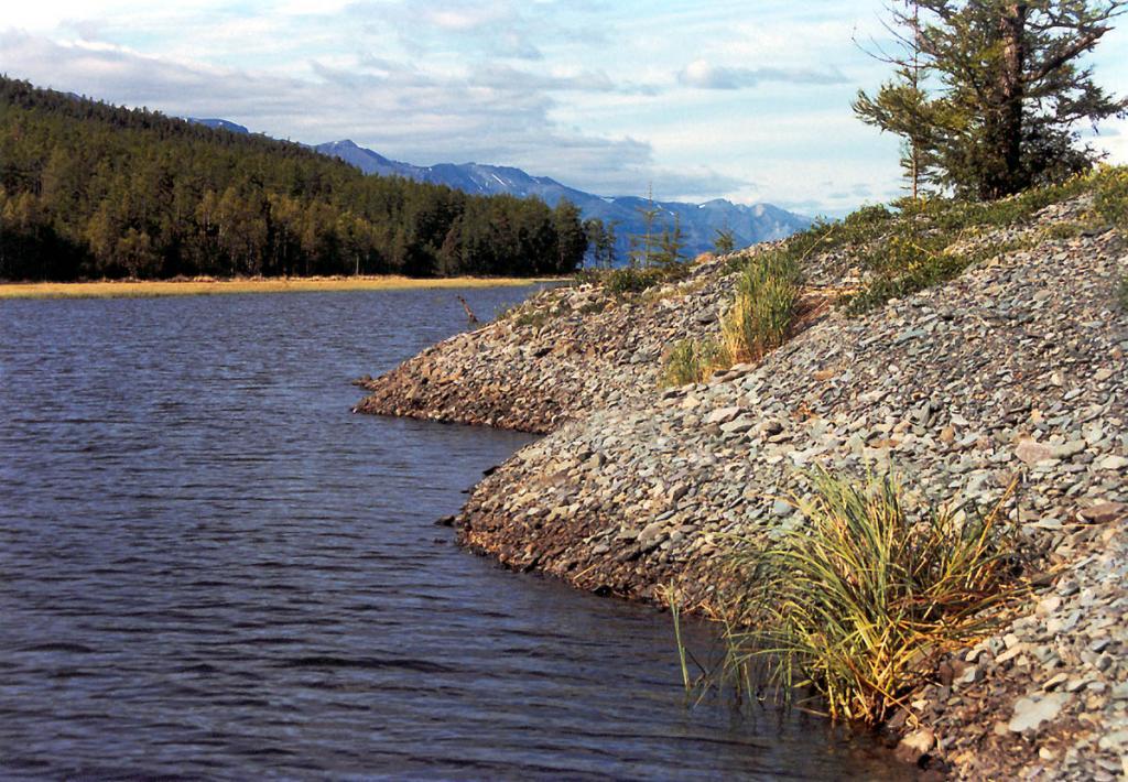 Высота галечникового вала, отделяющего лагунное озеро Щючье от Байкала составляет в среднем (при разных уровнях) 1.5 - 2 м. До 1998 года в озере водились щюка и окунь (после промерзания озера из-за сильных холодов и низкого уровня воды, рыба исчезла).