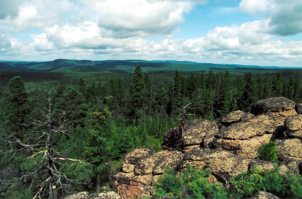 Огромные пространства западнее Байкала покрывает дремучая тайга: изумрудная полоса коренных хвойных и вторичных (кедровых, пихтовых, еловых, смешанных с березой, лиственницей, осиной) лесов протянулась на 400 километров! Снимок сделан на Приморском хребте в вершине левого притока р. Голоустная - Колесма Морская.