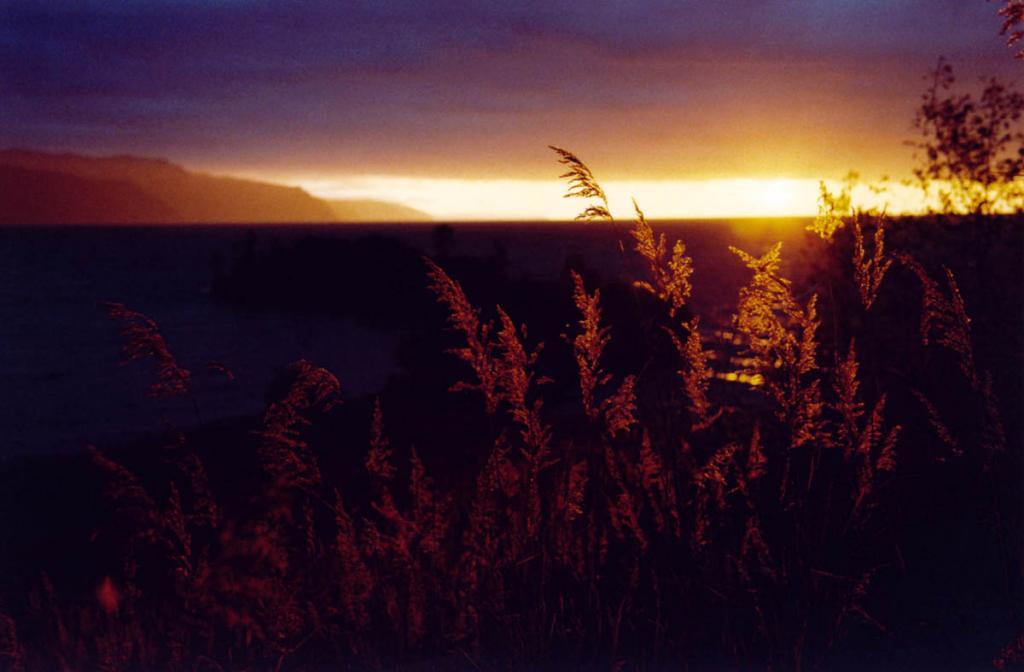 Поверх трав и глубин Байкала текут токи Мудрости Солнца. Снимок сделан с Шаманского Мыса (Южный Байкал).