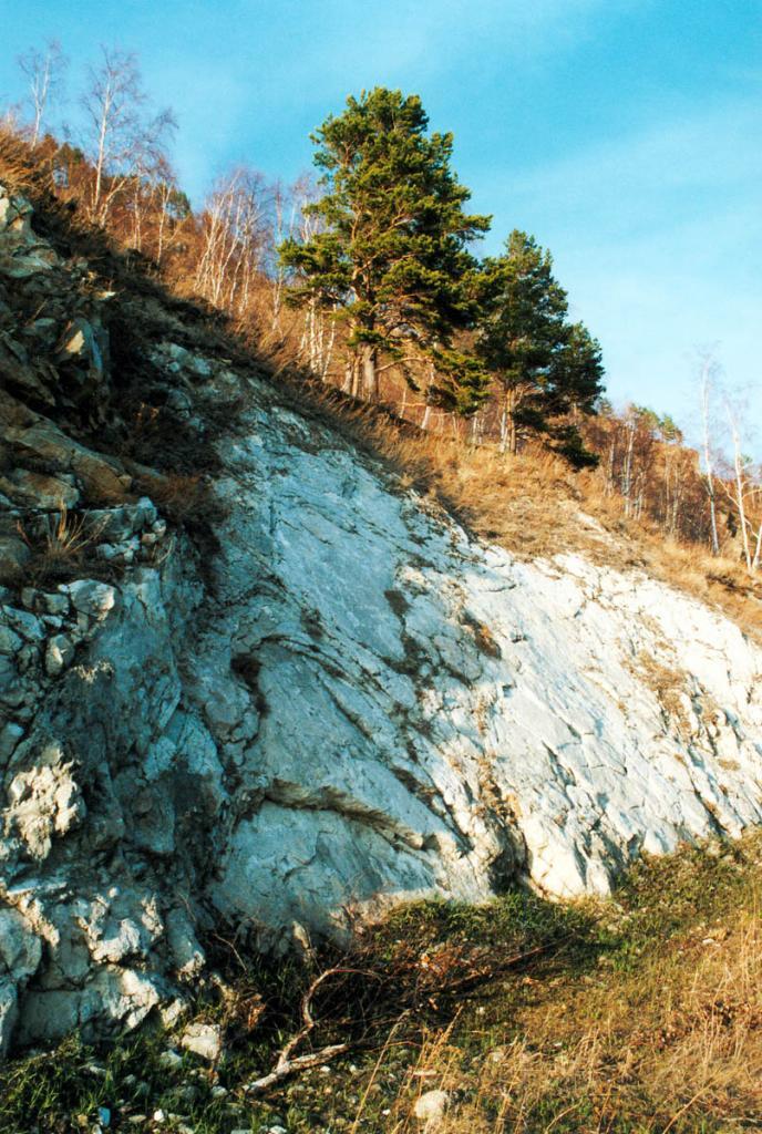 На юго-западном побережье Байкала (от п.Култук до п. Листвянка) обнажаются древнейшие породы Шарыжалгайского комплекса. Геохронологические данные свидетельствуют о наличии в составе серии трех возрастных групп пород: 3 млрд. лет и более (до 4 млрд. лет); 2.5 млрд. лет и около 2 млрд. лет. На Белой Выемке достаточно широкое распространение получили образования всех трех этапов развития шарыжалгайской толщи. И что особенно важно, здесь сравнительно интенсивно проявились процессы постмагматического метасомато