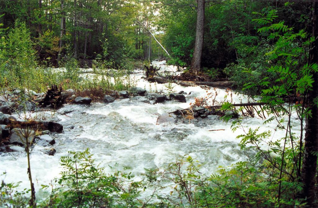 Ливневые дожди в течение нескольких часов повышают уровень воды на горных речках. На снимке: р. Заворотная после июльского дождя.