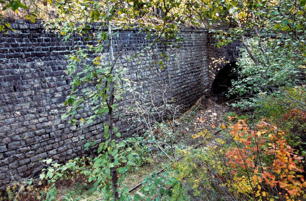 Каждый из тоннелей Кругобайкальской железной дороги, выполненный из местного байкальского камня, сочетает в себе фундаментальную прочность и своеобразное изящество.