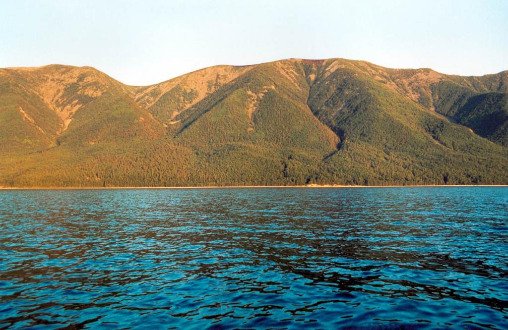 Западные склоны полуострова Святой Нос (на снимке южнее мыса Маркова) круто обрываются в Байкал. За исключением небольших участков, примыкающих к осевой линии гребня, их покрывают девственные хвойные леса.