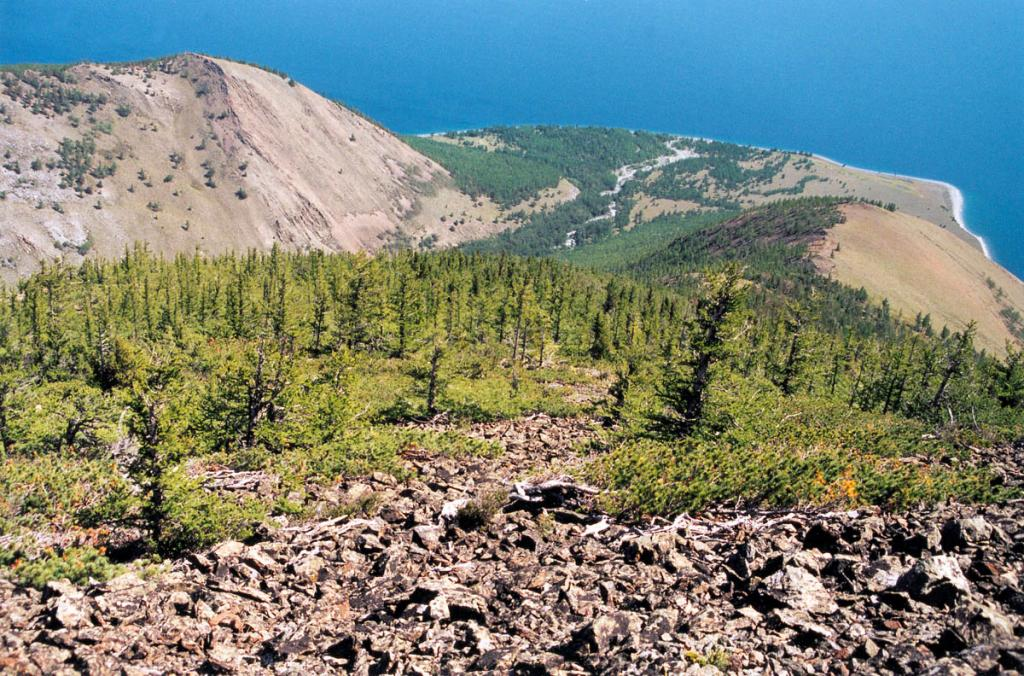 У западных берегов горные распадки, как правило, заканчиваются конусами выноса с развитой на них лесостепной и степной растительностью. На снимке: мыс Шартлай.