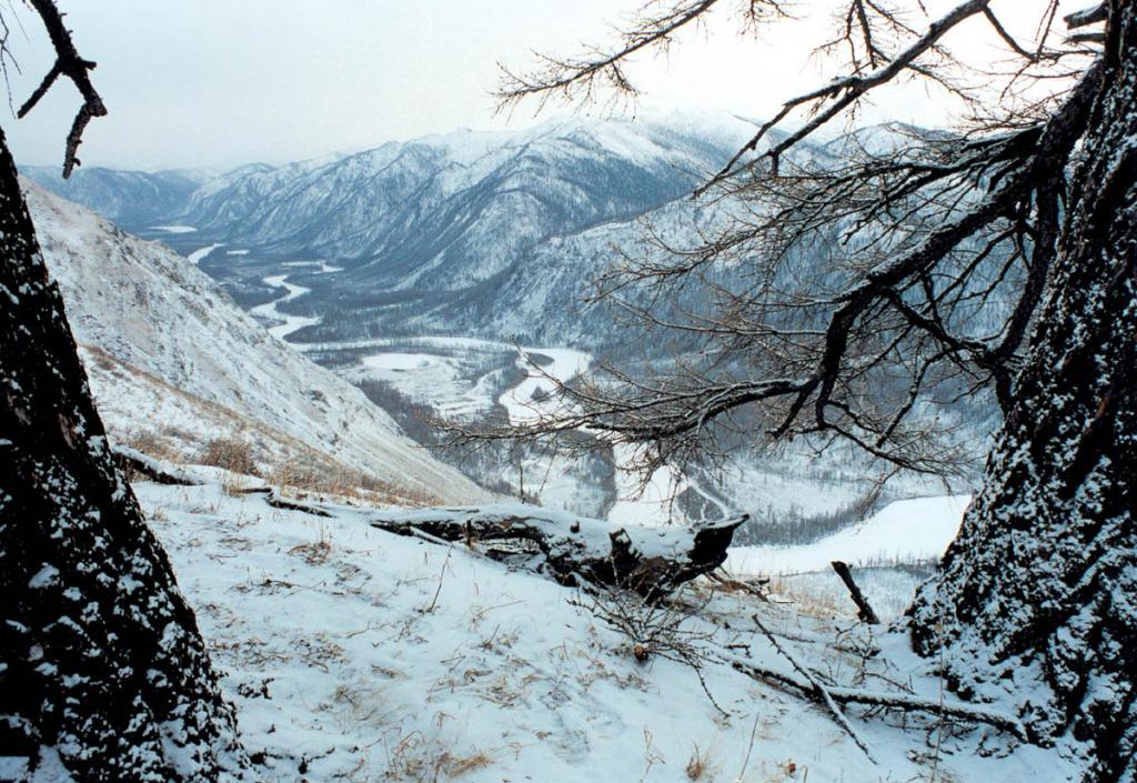 Недостаток малого количества ярких красок пасмурным днем в горах возмещается тончайшей голубоватой дымкой, окутывающей все вокруг, - одно из самых красивых явлений прибайкальской зимы!