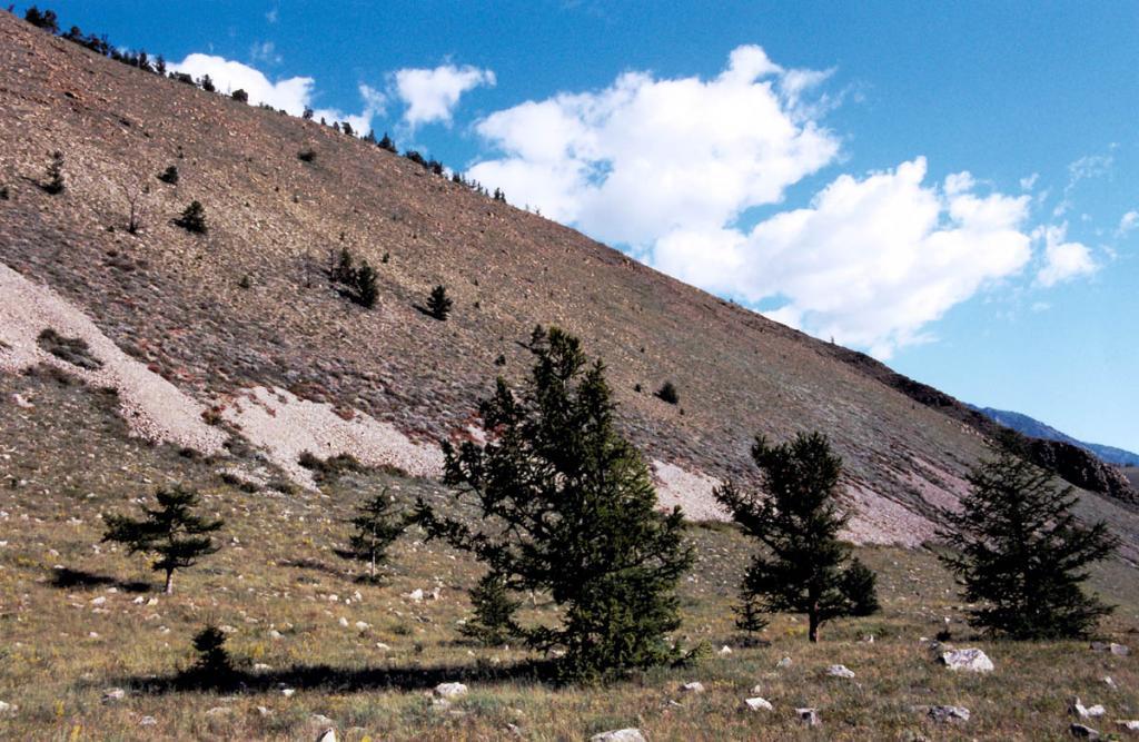 На мысе Хыр-Хушуун (Рытый) степные участки сплошной полосой опоясывают подножие коренных склонов и поднимаются в высокогорья.