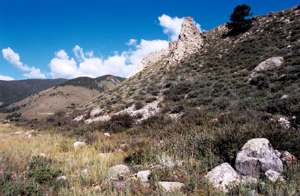 Степи на мысе Хыр-Хушуун (Рытый) представлены разнотравно-злаковыми и злаково-разнотравными сообществами с лишайниками. По составу флоры они мало отличаются от горных степей лесного пояса.