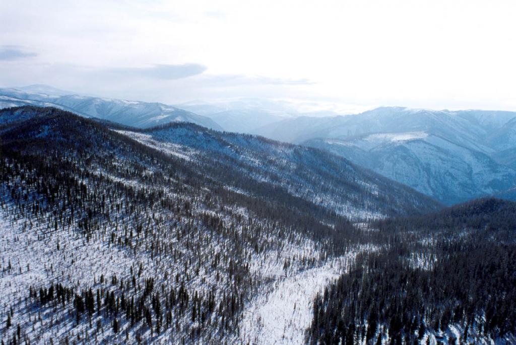 Байкальский регион (блок земной коры) определяется геологами чрезвычайно активным во все эпохи, что отличает его от соседних областей Северной Азии. Вся Саяно-Байкало-Становая складчатая область является аномально активной. Контуры этого продолжительного активного пояса близко совпадают с областью аномальной мантии. Снимок сделан с вертолета над окраиной Восточных Саян (Тофаларией).
