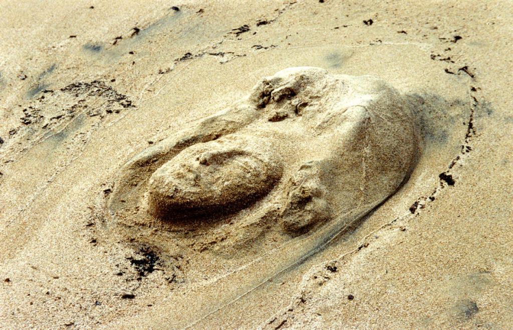 """""""Бурхан Байкала"""". Скульптурное изображение человеческого лица на песчаном берегу в Баргузинском заливе создано художником."""
