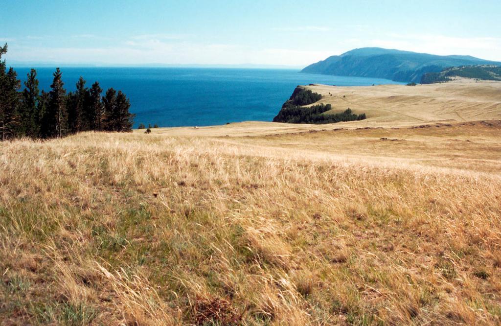 Ковыльная степь на северной оконечности острова Ольхон.