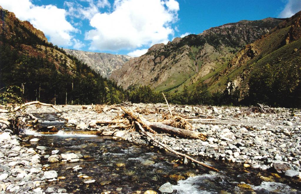 Священное у североазиатских шаманов ущелье речки Риты остается одним из самых загадочных мест Сибири. Байкало-Ленский заповедник.