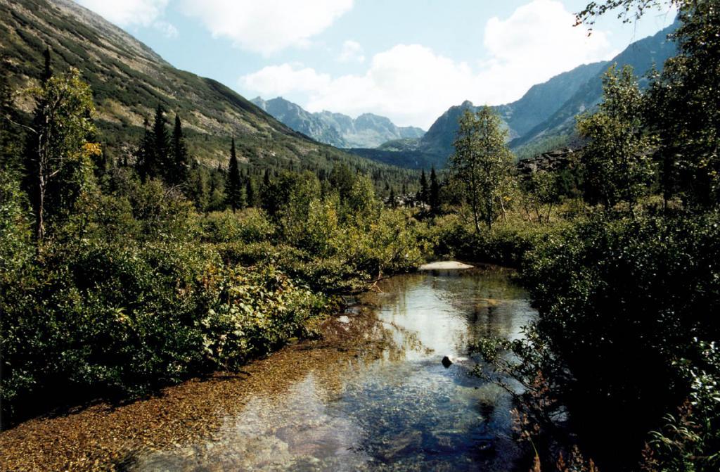 Около 60% всех рек, впадающих в Байкал, дает более влажный восточный берег озера. На снимке: речка Шумилиха.