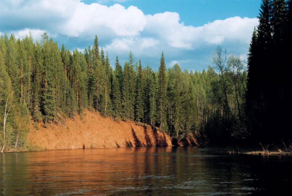 Красный Яр на реке Лена. Верхнее течение. В таких обнажениях на берегу Великой реки нередко можно найти кости животных ледникового периода - мамонта, шерстистого насорога или гигантского оленя.