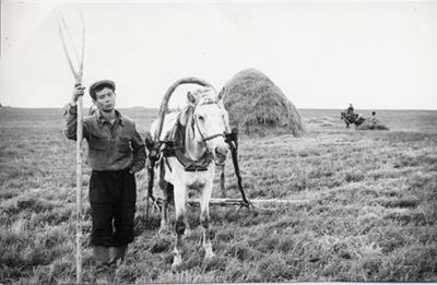 А. Вампилов в колхозе.