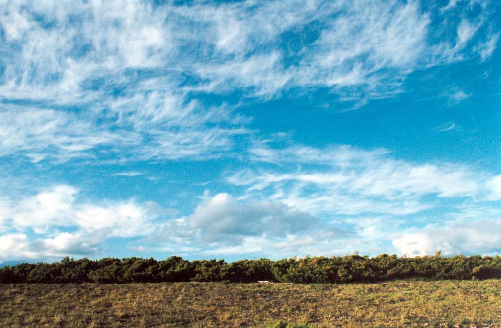 Край горных плато на Байкальском хребте часто венчает полоса из кедрового стланика.