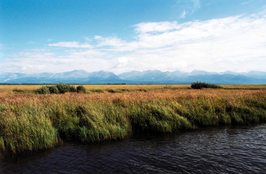 Красивая 28-километровая долина реки Верхняя Ангара - царство болот, торфяников, кустарниковых и камышовых зарослей. Река является судоходной на протяжении 170 км. от устья.